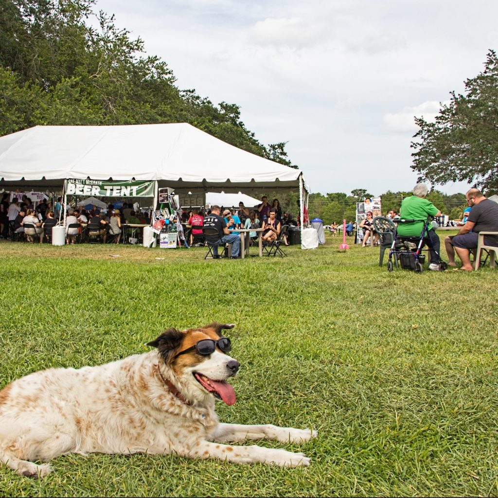 Dog with sunglasses on, lying in the grass of the festival with tents and other human patrons behind.